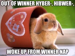 Bunny: Out of winner hyber-, hibwrer-... woke up from winner nap