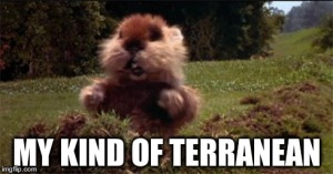 my kind of terranean